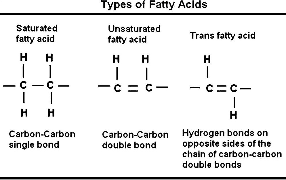 trans-fatty acid